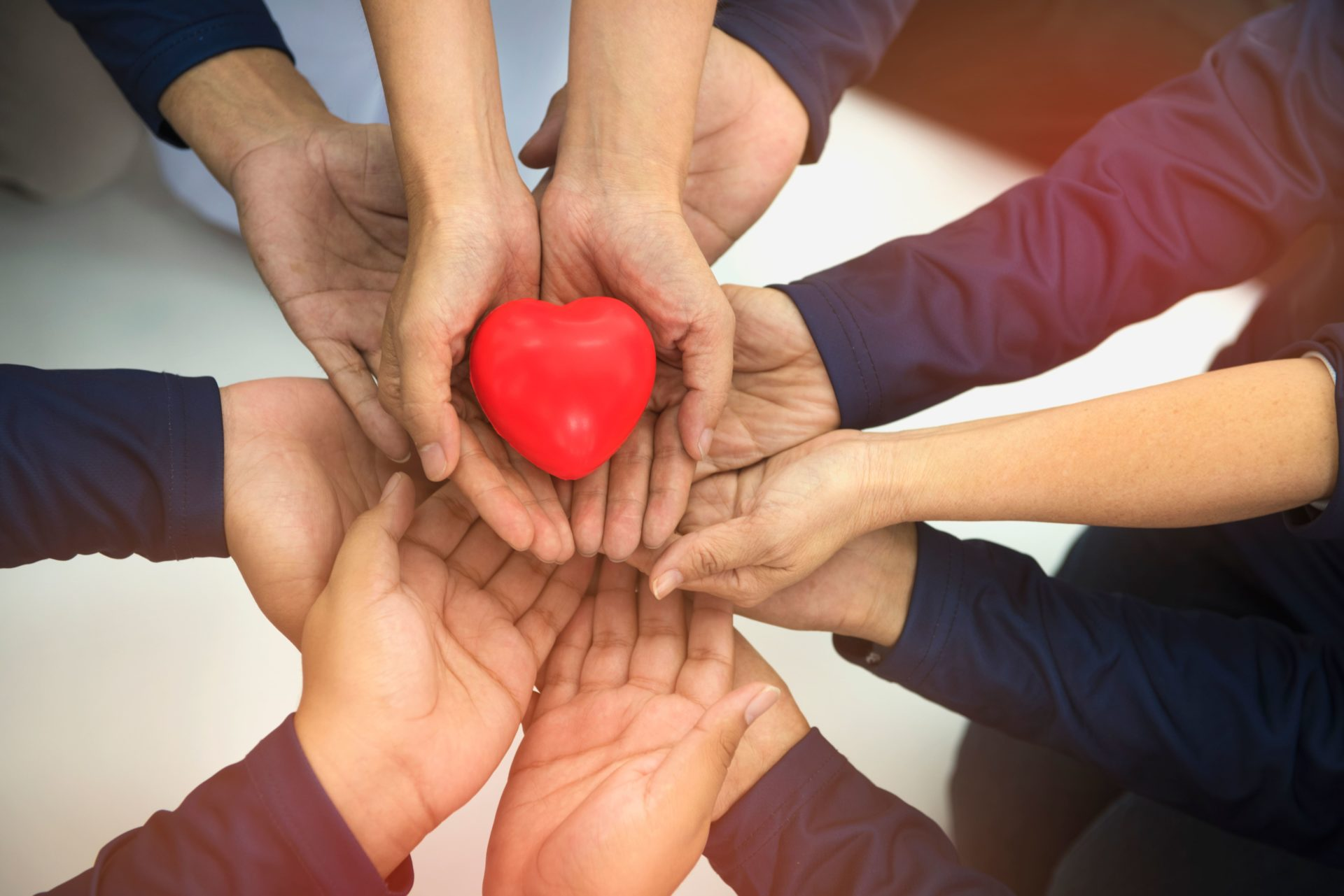 Group of hands holding a fake heart